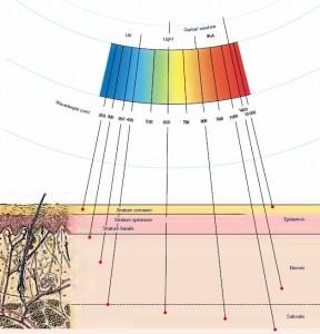 infraredpenetrationhumanskin